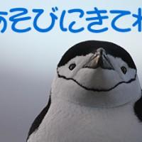 南極探検旅行