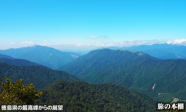剣山山頂付近のミヤマクマザサの平原