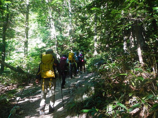 歩きやすい登山道