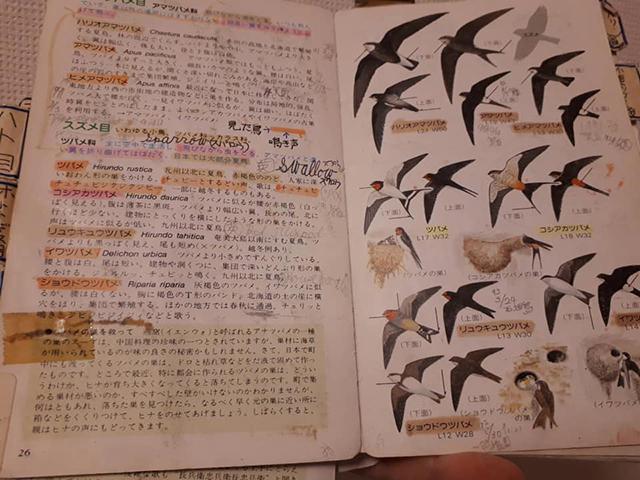 久下氏の図鑑