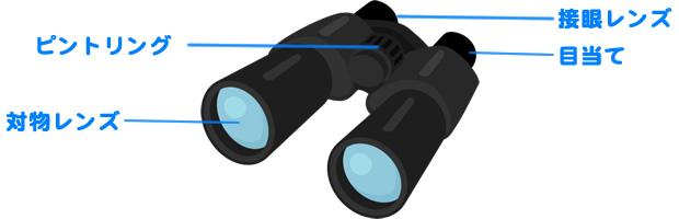 バードウォッチング基礎知識 双眼鏡の調整