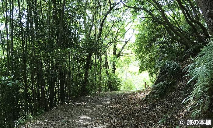 初谷渓谷を歩く
