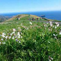 隠岐四島の最高峰と絶景の赤壁・国賀海岸