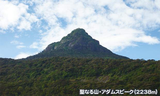 スリランカ アダムスピーク(2238m)登頂と世界遺産を巡る旅