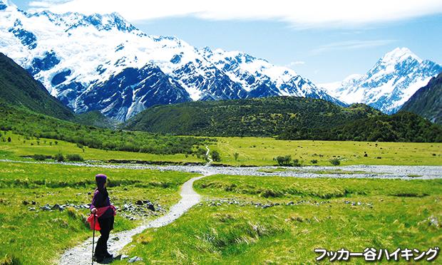 フッカー谷ハイキング