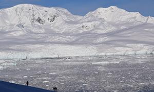 南極探検旅行 ネコ湾