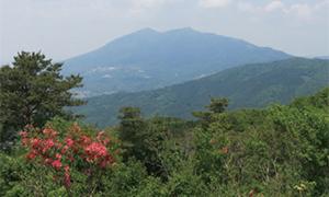 春の花咲くハイキング 宝筐山 (茨城)