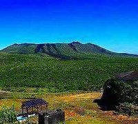 伊豆大島・三原山トレッキングと椿まつり